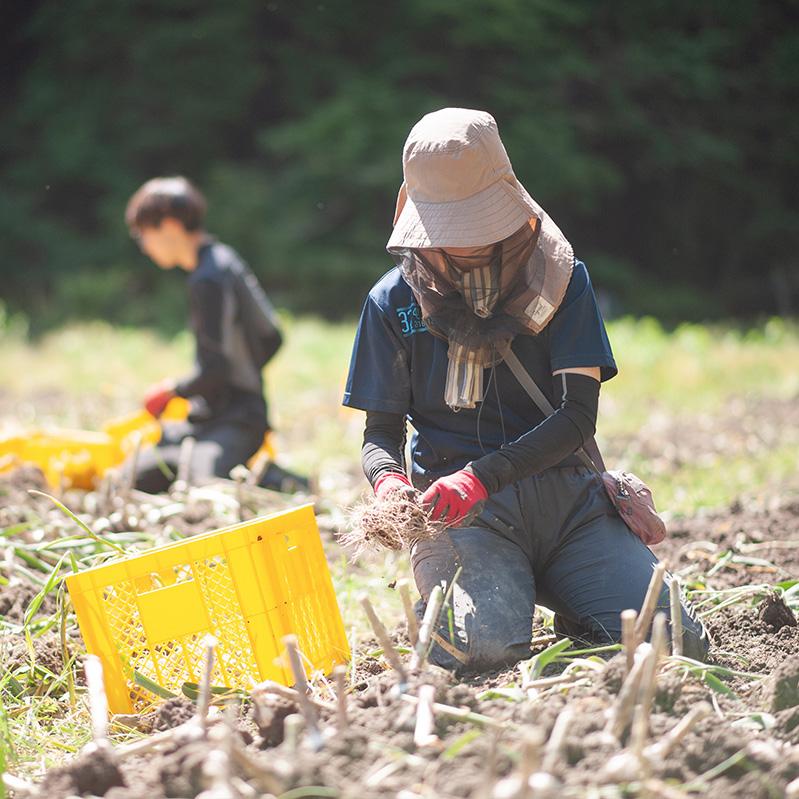農業をもっと楽しく おしゃれにオープンに