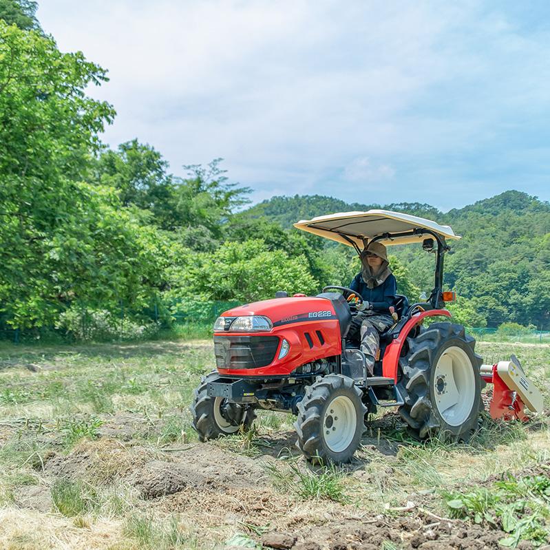 耕作放棄地をにんにく畑に 美しい里山を未来につなぐ